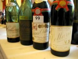 Sintra - Colares wines