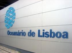 Lisbon - Lisbon Oceanarium by Mortadelo2005 @Wikimedia.org