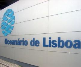 Lisbon - Oceanarium by Mortadelo2005 @Wikimedia.org