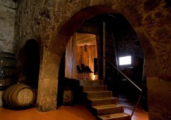 Port Wine Cellars Tour - Calem