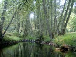 Porto - Nature Trip and Sightseeing - Montesinho Natural Park by Manuel Anastacio @Wikimedia.org